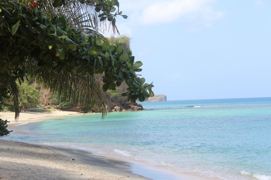 Laluna Hotel: The gorgeous beach- great for snorkeling!