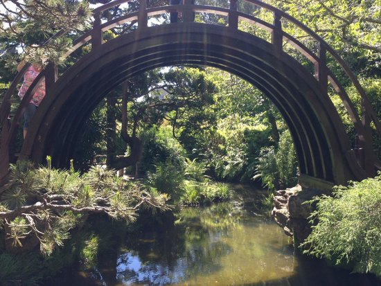 Japanese Tea Garden : Walk over the bridge. If you can