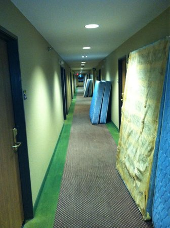 Microtel Inn & Suites by Wyndham Owatonna : Mattress lined 3rd floor, but at least you know they change them.