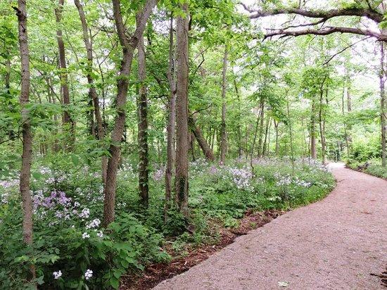 Hotel Lakeside: Nature trails at Chautauqua Park