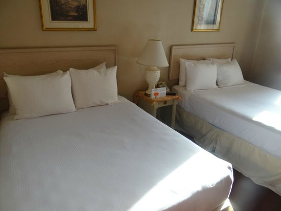 The Mayfair Hotel: Camas