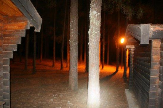 El Garanon : vista nocturna