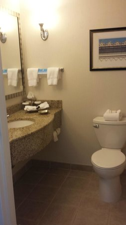 Stonewall Jackson Hotel and Conference Center: bathroom in rm 314