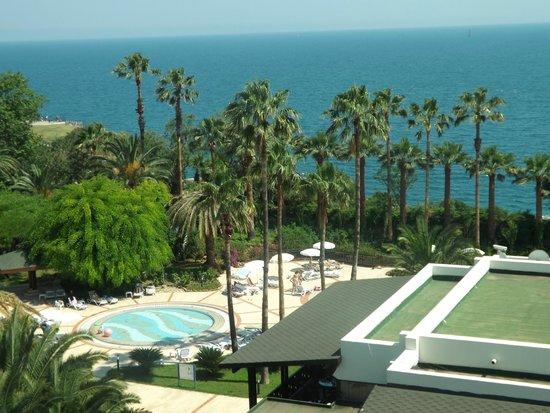 Ozkaymak Falez Hotel: вид из окна (детский бассейн)