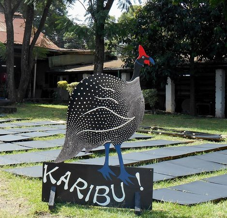 Nakuru, Kenya: Karibu - Welcome to our workshop!