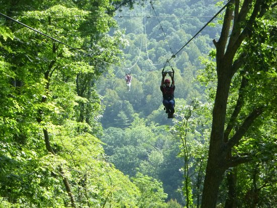 Navitat Canopy Adventures - Asheville Zipline: Coming in for a landing...what a rush!