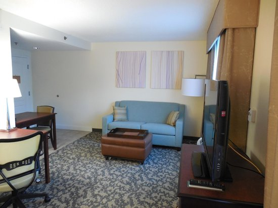 Homewood Suites by Hilton Montgomery: Living room (sofa bed)