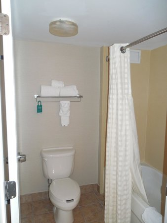 Homewood Suites by Hilton Montgomery : Tub and toilet