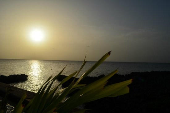 The Cracked Conch by the Sea: View of the sunset from outdoor seating area