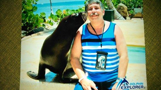 Dolphin Explorer: Sea lion kiss
