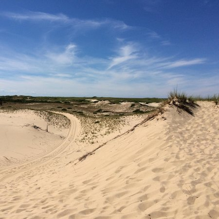 Art's Dune Tours: We had a wonderful time with Barbara who showed us around the beautiful dunes!
