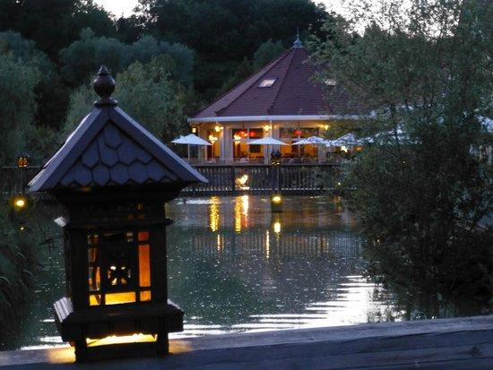 Les Jardins de Beauval : nuit d'été aux jardins de Beauval