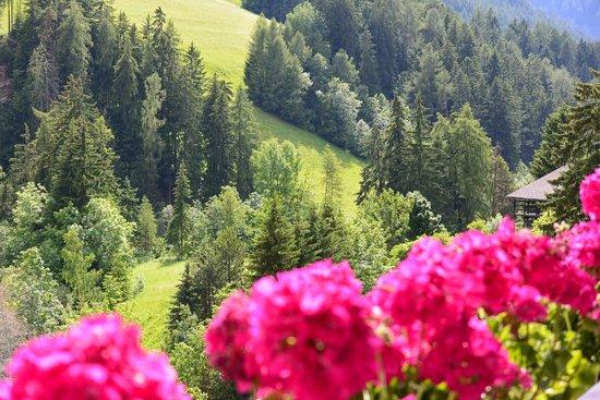 Cavallino Bianco Family Spa Grand Hotel: Panorama dalla camera