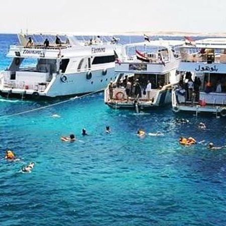 Coral Beach Resort Tiran : Scuba diving