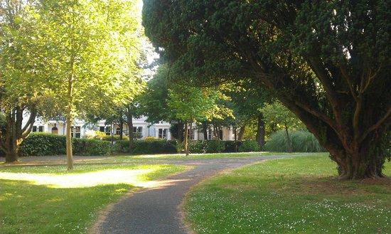 Thorn Park