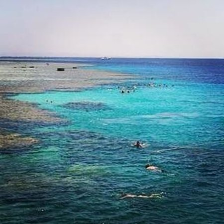 Coral Beach Resort Tiran: Scuba driving