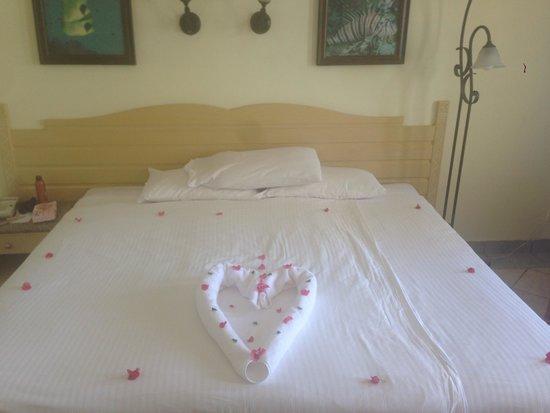 Coral Beach Resort Tiran : So sweet