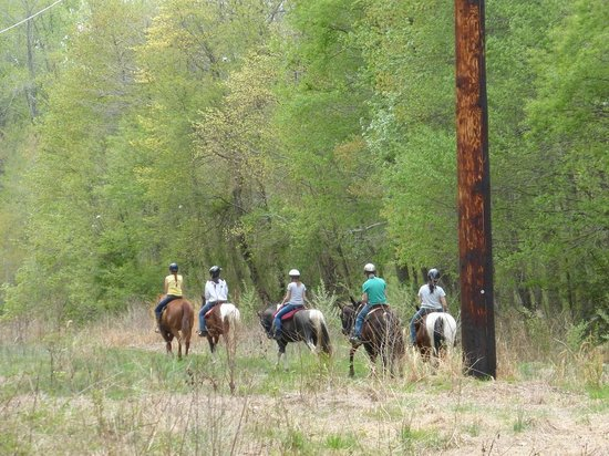 Lums Pond State Park : Horseback Riding at Lums Pond