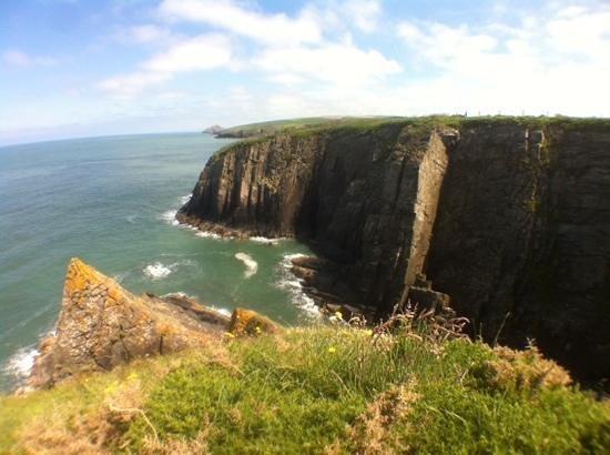 Cardigan Island Coastal Farm Park: cliffs