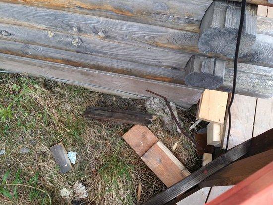 Denali Crow's Nest Cabins: Broken supports.