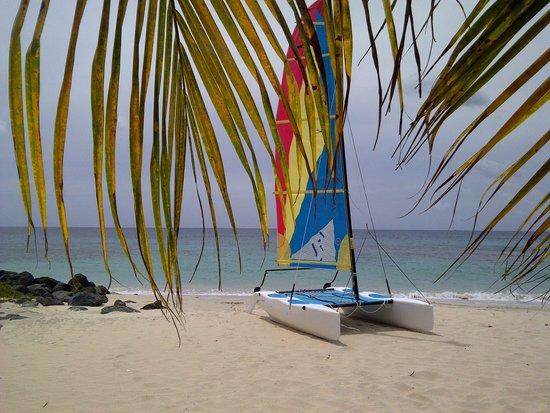 Grenadian by Rex Resorts : catamaran