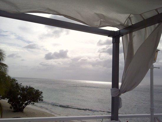 Grenadian by Rex Resorts : poolside