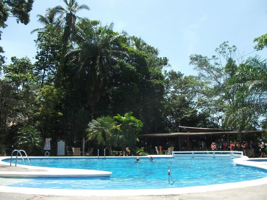 Pachira Lodge : pool