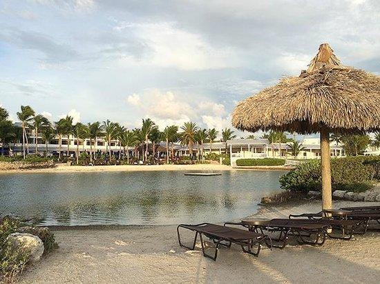 Hawks Cay Resort : Natural Lagoon