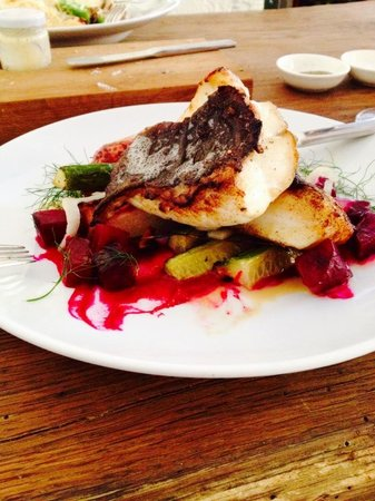 Lokal: Turbot, courgette, fennel, beetroot, Jerusalem artichoke