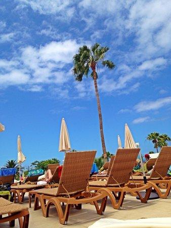 HOVIMA Costa Adeje: Aan het zwembad, alles mooi nieuw qua bedjes enzo!