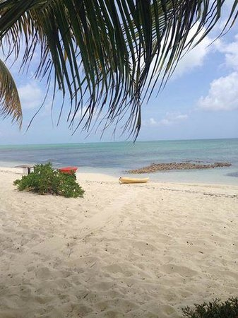 da Conch Shack: Stunning view for early conch lunch!!