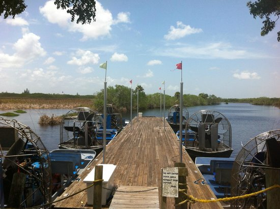 Capt Mitch's - Everglades Private Airboat Tours: A view from the dock of the various boats available