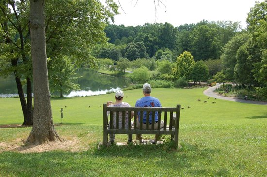 Meadowlark Botanical Garden : Easy walks and lots of benches.