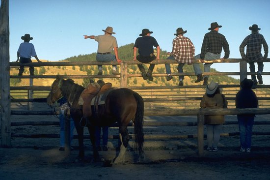 Triangle C Ranch: Corral Sitters!