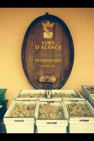 Cote Vigne: Domaine Schmitt Et Carrer  avec le Restaurant Côté Vigne.