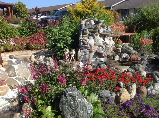 Surf Motel and Gardens : Some of the beautiful landscaping