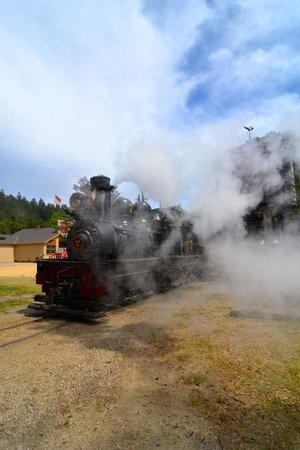 Roaring Camp & Big Trees Narrow-Gauge Railroad: Steamy Train