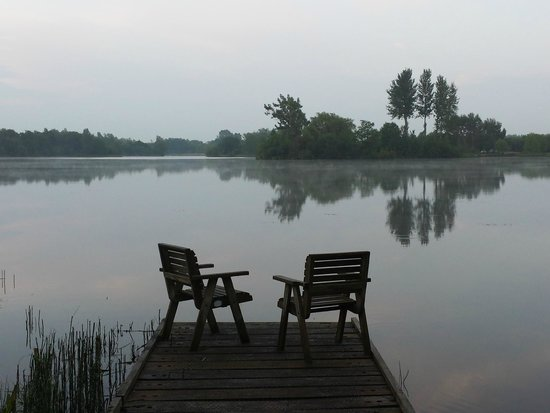 Log House Holidays: view from Lake Springs