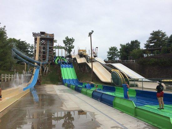 Noah's Ark Water Park: Water Slides