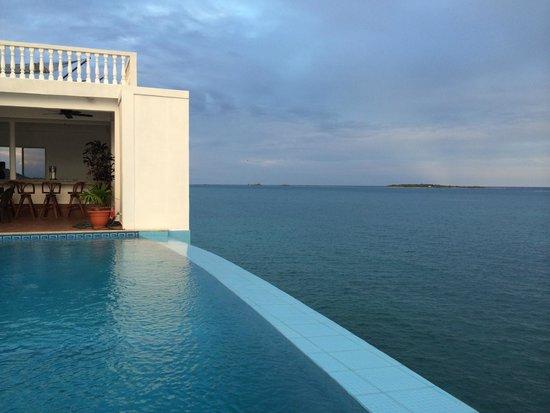 Villa On Dunbar Rock: Infinity pool by the bar