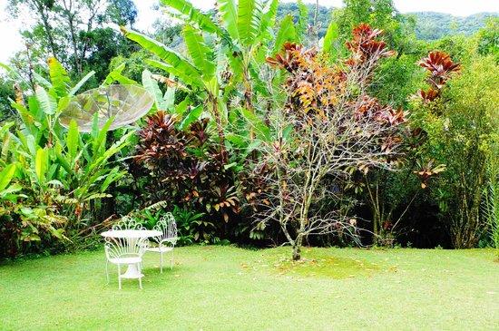Bromelia Sabia Pousada: Jardim