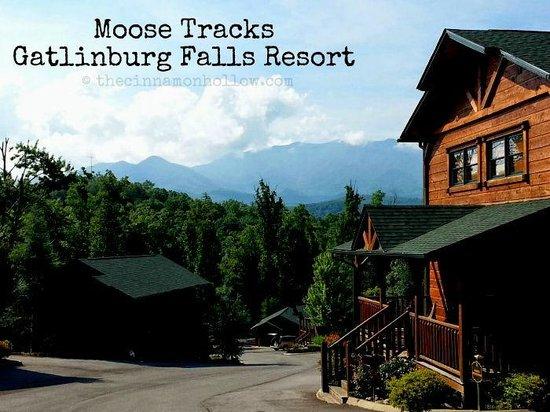 Gatlinburg Falls Resort: Mountain view from Moose tracks cabin.