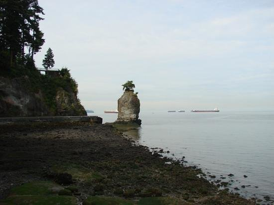 Vancouver Seawall : A view from the Sea Wall