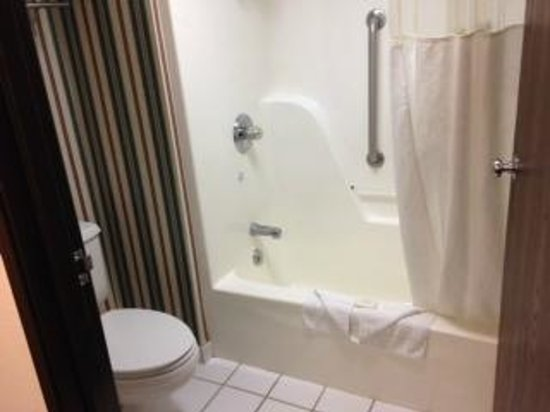 Ramada Pearl/Jackson Airport: Shower