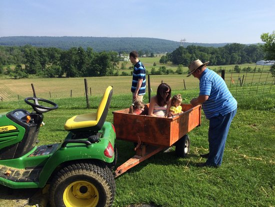 Airy Hill Farm B&B : Mark with the girls on a tractor ride