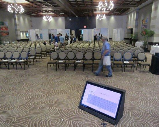 Southern Sun Elangeni & Maharani: Main conference room