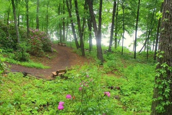 Fred Hamilton Gardens: Lake Trail to the lake