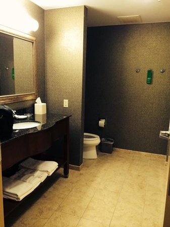 Hampton Inn Bryant: spacious bathroom