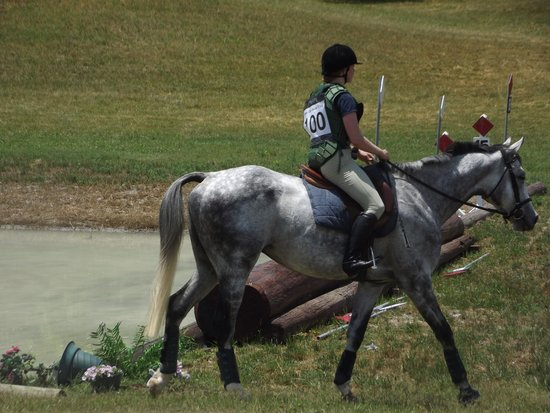 Super 8 Dandridge: Riverglen Horse Trials 2014