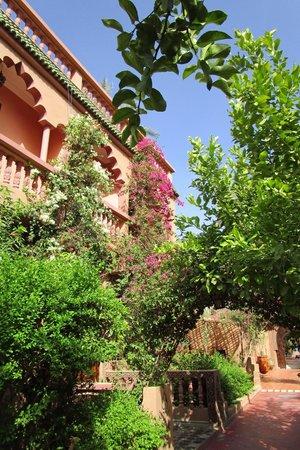 Auberge Restaurant Chez Ali: Hotel